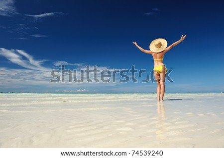 Girl on a tropical beach with outstretched arms - stock photo