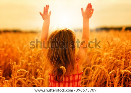 Girl on a wheat field in the sunset. - stock photo