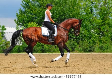 Girl on bay dressage stallion - stock photo