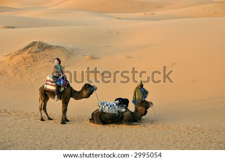 girl on camelback among the sand dunes in Sahara desert - stock photo