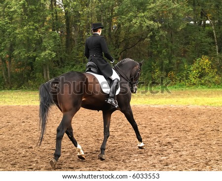 Girl on horse in a dressage competition. - stock photo