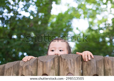 Girl peek from the top of the tree - stock photo