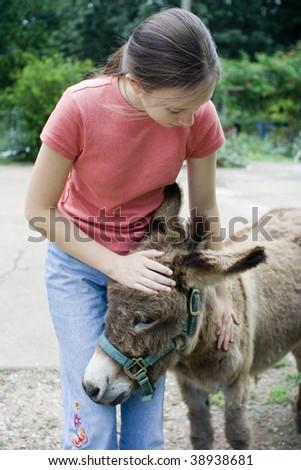 Girl petting miniature donkey - stock photo