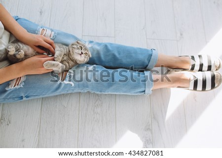 Girl playing and holding hands on a beautiful scottish little cat in vintage room.