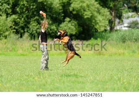Girl playing with dog on green grass