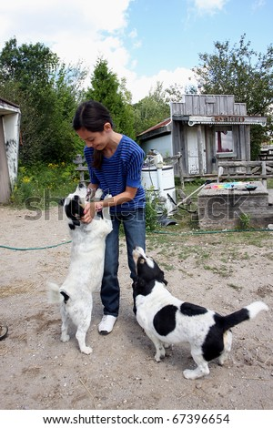 girl playing with dogs - stock photo