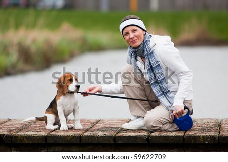 Girl playing with young dog. Beagle puppy - stock photo