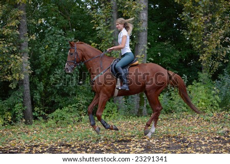 Girl ride on top a bay horse in park