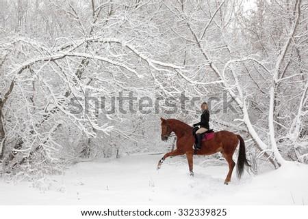 Girl rides horseback at snow-covered park  - stock photo