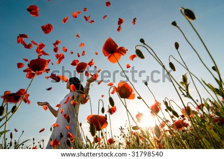 Girl stands in poppy field - stock photo