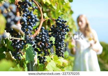 Girl tasting wine among vineyards. Lavaux, Switzerland - stock photo