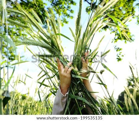 Girl tenderly embraces sheaf of wheat - stock photo