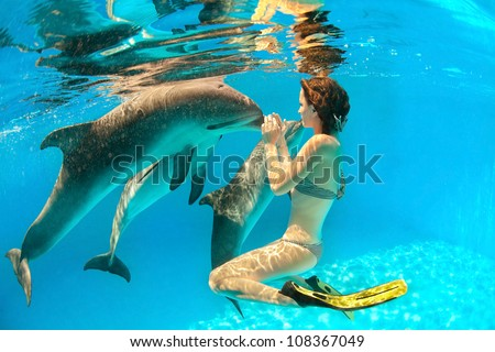 Girl touches a dolphin's nose under water