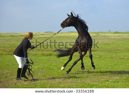 girl trains the horse / summer - stock photo