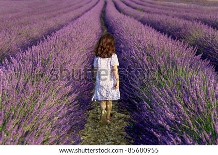 Girl walking away in a field of lavender - stock photo