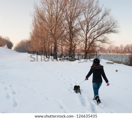 Girl walking the dog on snowy winter day. - stock photo