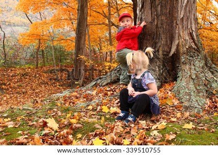 girl watching boy climb a tree
