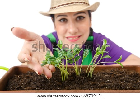 Girl watering plants on white - stock photo