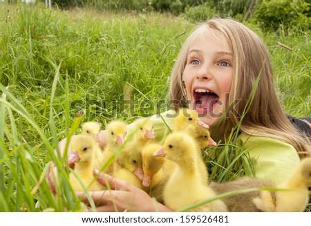 girl with goslings - stock photo