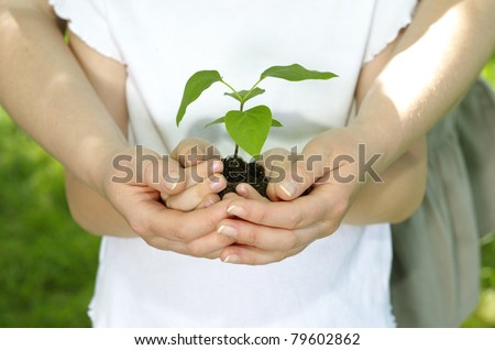 Girl with her mother holding a new plant - stock photo