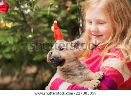 girl with little dog on background christmas tree - stock photo