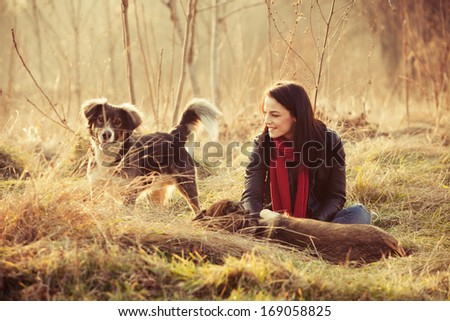 girl with pariah dogs sit in yellow grass warm winter day retro colors - stock photo