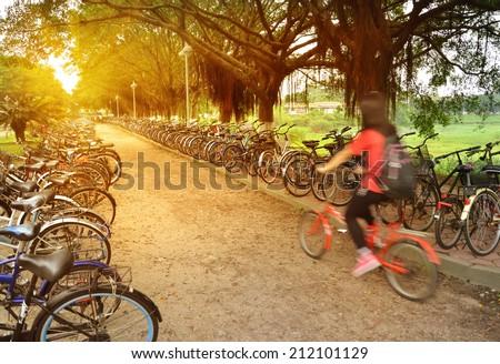 Girls go to school by bike   - stock photo