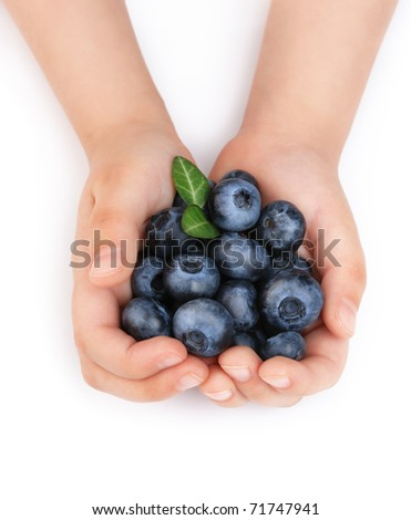 Girls hands holding ripe blueberries. Isolated on white background - stock photo