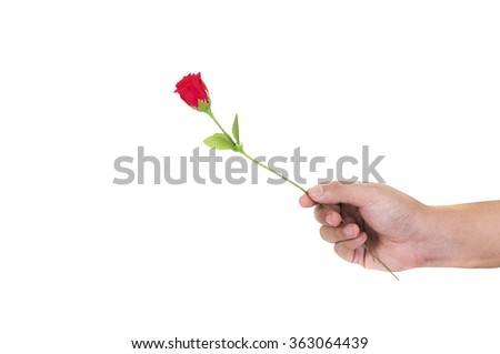 Giving a artificial / fake rose gift.