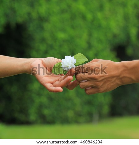 giving jasmine flowers this flower symbol stock photo edit now