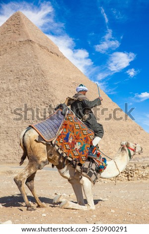 GIZA, EGYPT - JAN 31, 2015: Bedouin commands a camel to sit down in Giza