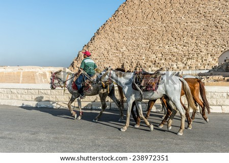 GIZA, EGYPT - NOV 23, 2014: Unidentified Egyptian man rides a horse at Giza Necropolis, Egypt. UNESCO World Heritage - stock photo
