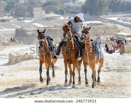 GIZA, EGYPT - NOV 23, 2014: Unidentified Egyptian man rides horses at Giza Necropolis, Egypt. UNESCO World Heritage - stock photo