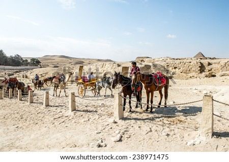 GIZA, EGYPT - NOV 23, 2014: Unidentified Egyptian people ride camels and horses in  Giza Necropolis, Egypt. UNESCO World Heritage