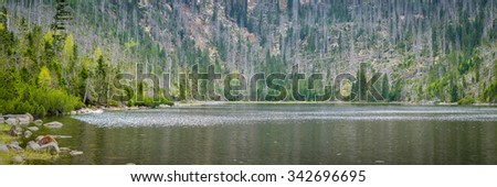 glacial lake Plesne surrounded by dead forest devastated by hurricane - natural park Bohemian forest - panoramic view - stock photo