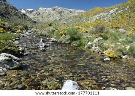 glacial spring in Sierra de Gredos - stock photo