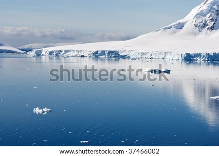 glacier ending in a blue bay - stock photo