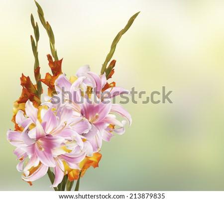 Gladiolus.Beautiful Bouquet - stock photo