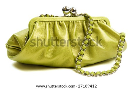 Glamour green bag 1 - stock photo