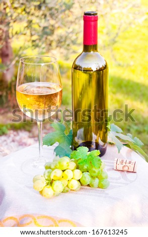 Glass and bottle of white wine