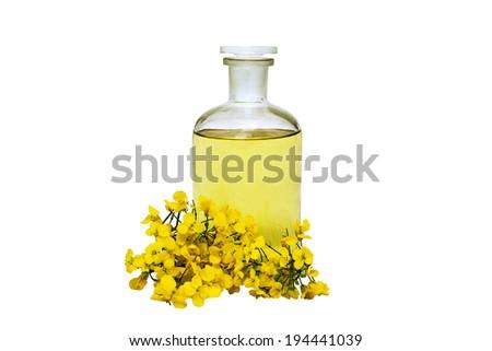 glass bottle of rape seed oil with rape flowers  - stock photo