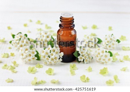 Glass bottle with essential oil, white flower blossom scattered. Herbal wellness.