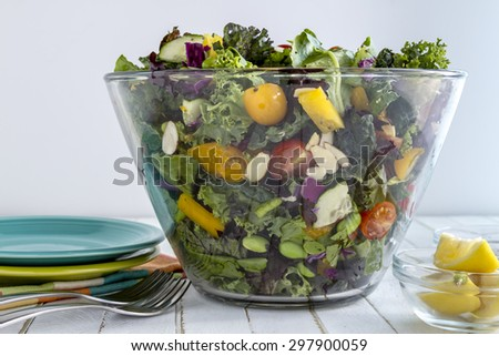 Glass bowl filled with organic super food salad with lemons, plates and forks - stock photo
