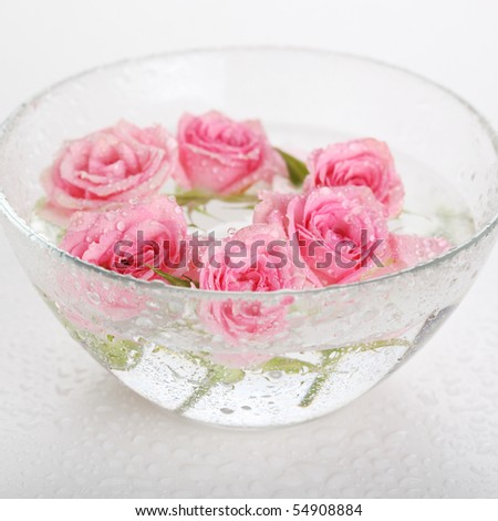 glass bowl with roses closeup - stock photo