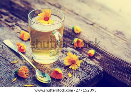 glass cup of herbal tea and summer flower - stock photo