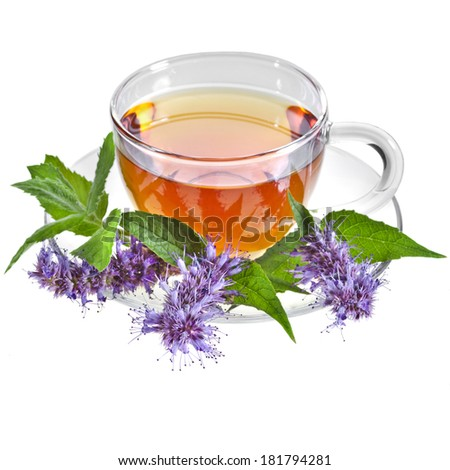 Glass Cup Tea with Mint Leaf and Herb flower, Isolated on White Background - stock photo