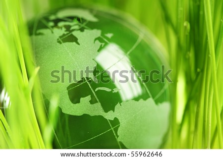 Glass globe in green grass - stock photo