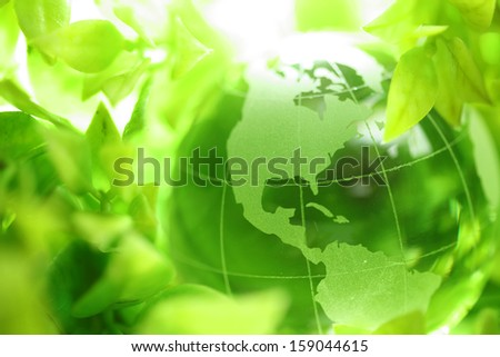 Glass globe in green leaves - stock photo
