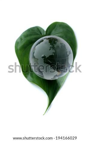 Glass globe on green leaf white isolated - stock photo
