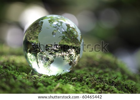Glass globe resting on moss stone in a forest - stock photo